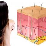 Защо протеините са важни за косата